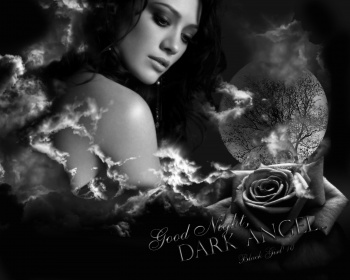 Good Night, Dark Angel...